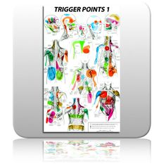 Free Printable Reflexology Charts   Trigger point chart printable - Mixed Message Media   Use your freedom ...
