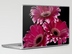Triple Crown of Red Gerbera Daisys Laptop & iPad Skin by F Photography and Digital Art - $30.00