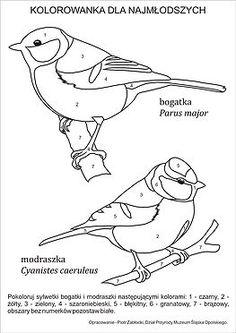Przydomowy karmnik jest znaną i lubianą formą pomocy ptakom. Pozwala na obcowanie z dziką przyrodą bez wychodzenia z domu.Niewłaściwe dokarmianie może jednak p Bird Drawings, Animal Drawings, Cute Drawings, Bird Embroidery, Embroidery Patterns, How To Draw Anything, Parus Major, Bird Template, Stained Glass Birds
