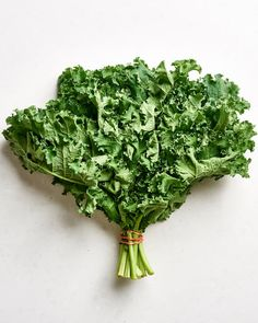 Oak Leaves, Green Leaves, Bright Green, Green Colors, Red Russian Kale, Kale Vegetable, Red Kale, Dinosaur Kale, How To Cook Kale
