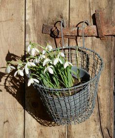 Panier rond pour pot de fleurs en métal filaire
