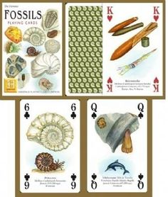 Insects /& Spiders set of 52 playing cards jokers hpc