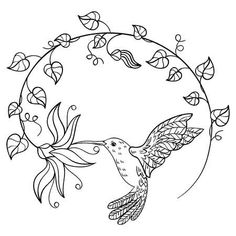 Illustration of Hummingbird drinking nectar from a flower. A flying hummingbird inscribed in a circle of flowers. Black and white vector illustration. vector art, clipart and stock vectors. Hummingbird Drawing, Hummingbird Tattoo, Art Drawings For Kids, Animal Drawings, Art Colibri, Coloring Books, Coloring Pages, Gravure Laser, Linear Art