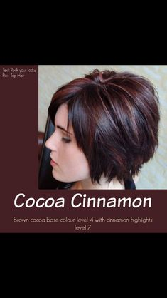 Cocoa Cinnamon Hair Color in Fall Hair Colors For Short Hair collection - HairSimply Hair Color And Cut, Haircut And Color, Winter Hair Color Short, Hair Colors For Winter, Short Hair Colors, Reddish Brown Hair Color, Pixie Hair Color, Cinnamon Hair Colors, Layered Bob Hairstyles