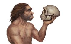 Dna Play, Brain Size, Anthropologie, Early Humans, Human Evolution, Archaeology News, Prostate Cancer, Ancient Artifacts, Science And Nature