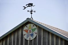Hex Sign Symbols | Confederate violets - these grow wild all over the farm. The pastures ...