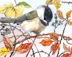 ACEO Limited Edition 1/25 - Berry bush chickadee, Chicakdee watercolor, Bird print of an ACEO original watercolor, Gift idea for bird lovers