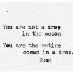 Você não é uma gota no oceano, você é o oceano inteiro em uma gota.
