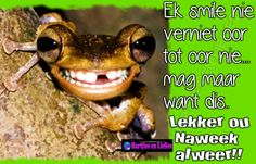 Lekker ou Naweek Cute Quotes, Funny Quotes, Goeie Nag, Day Wishes, Afrikaans, A Funny, Morning Quotes, Happy Friday, Lisa