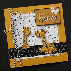 Marjolein heeft een hobbyzaak in Abbekerk (N-H). In dit blog vind je voorbeelden van kaarten en informatie over haar cursussen en aanschuifworkshops. Baby Zebra, 3d Cards, Marianne Design, Scrapbooking, Welcome Baby, Cricut Creations, Card Sketches, Baby Cards, Homemade Cards