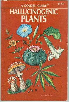 A list of Halucinogenic Plants Vintage Book Covers, Vintage Books, Cool Books, My Books, Book Cover Art, Book Art, Cheech Y Chong, Occult Books, Art Graphique