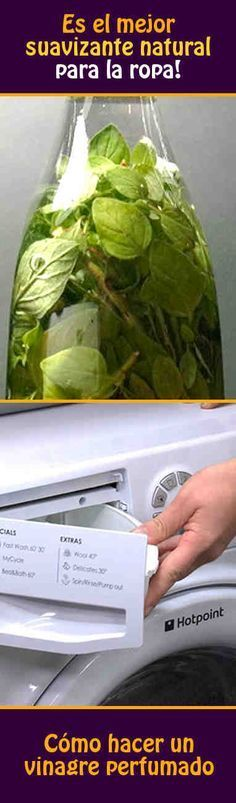 Cómo hacer un vinagre perfumado. Es el mejor suavizante natural para la ropa!
