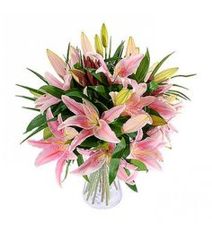Pink lilies have come to represent motherhood and In Greek poetry, the lily stood for tenderness. There is a Greek myth that tells us how the lily was born from the milk of the goddess Hera. The lily still symbolises pure, virginal love in the Christian world.
