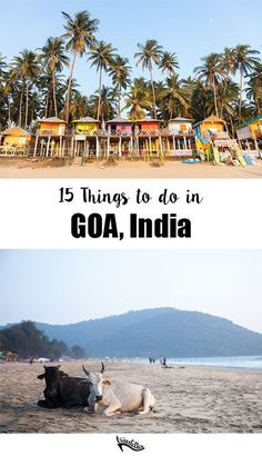15 Things to do in Goa, India | Travelettes