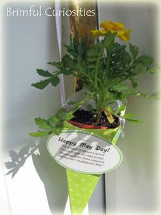 Brimful Curiosities: May Day Baskets
