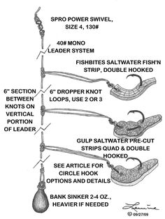 Saltwater Baits and Rigs: Vermillion Candy. Designed as a bottom rig, this can be used as a mid-depth drop rig to keep from having to re-bait so often. Use 3-3/0 circle hooks, 40# leader, 2-4 oz. weight and a 130# power swivel.