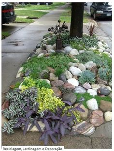 Hermoso jardín frontal