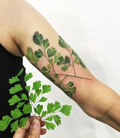 Adiantum (also known as maidenhair fern) tattoo on the upper arm.