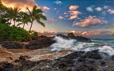 desktop background hawaii - Google Search