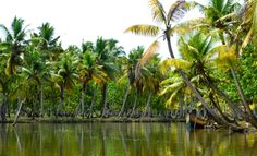 AFAR.com Highlight: Relaxing on the Backwaters by Julee K.