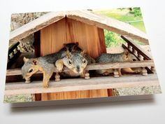 Squirrel House with porch. I so need to build one of these
