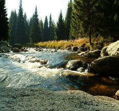 oh, to be able to walk in this river again. one day.