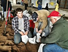 Farmer neighbors working together to stem the tide from floodwater by bagging sand.