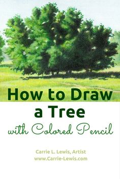 June is landscape drawing month. Today's post is a step-by-step tutorial showing you how to draw a tree with colored pencil.