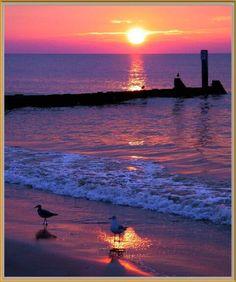 Buckroe Beach in Hampton, Virginia. I was born in Hampton -- no wonder I have a beachgirl spirit !!!