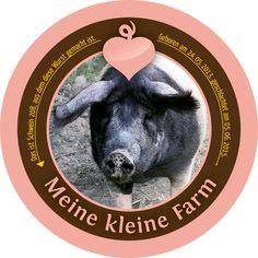Schwein 208
