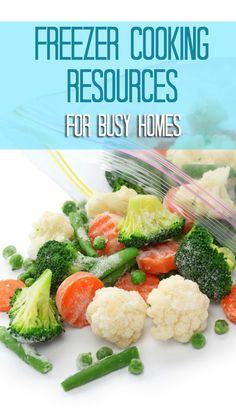 A Busy Woman's Guide To Freezer Meals