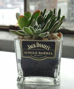 13 Best Miniature Alcohol Images Glass Bottles Jack Daniels