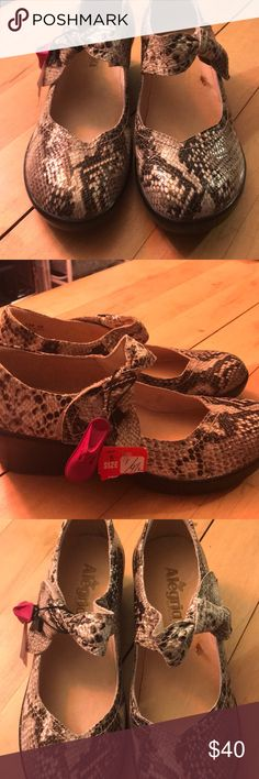 Alegria Mary Jane style shoes. These are Alegria Mary Jane style shoes. They do have a little wedge heel. They are leather in a snakeskin print. Super cool. NWT Alegria Shoes Mules & Clogs