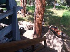 House back decks