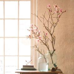 Terrain | Shop the Project: Vintage Tulip Magnolia Jar