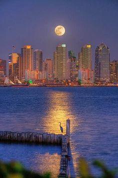 Moon Over San Diego Bay, California