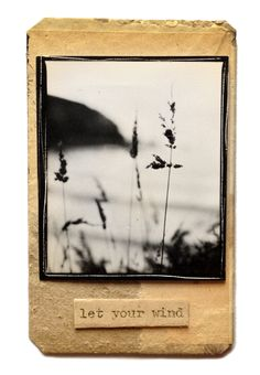 let it... Photo Arrangement, Experimental Photography, Overwatch, Black And White Photography, Book Art, Journaling, Mixed Media, Ink, Let It Be