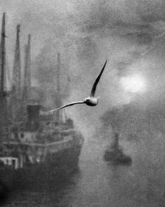 Bill Brandt  Early morning on the river, 1930