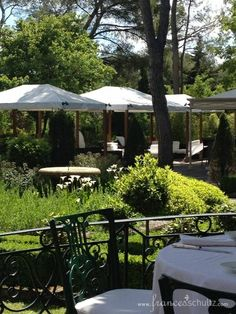 Outdoor dining in the garden at Le Pigonnet hotel in Aix-en-Provence. Postcard From Provence No. 1 – Bonjour! | Frances Schultz