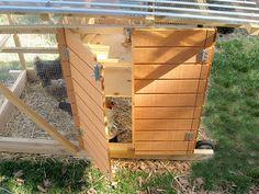 The Garden Ark Mobile Chicken Coop Plan Ebook (pdf), Instant Download, Imperial…