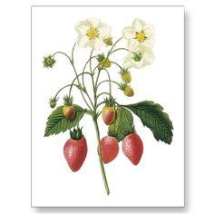 #strawberry tattoo for Grandma Jo