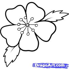 Easy to Draw Cherry Blossoms   how to draw a cherry blossom step 7