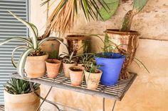 Detalles de una casa con encanto en las afueras de Sevilla...