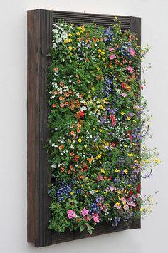 VertiGarden Vertical Gardens | Gallery