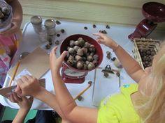 Weighing and exploring acorns in preschool | Teach Preschool