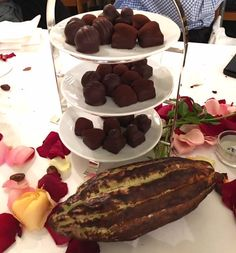 A Feast of Chocolate with Honold and Felchlin in Zurich Swiss Chocolate, Zurich, Truffles, Pudding, Breakfast, Board, Desserts, Blog, Morning Coffee
