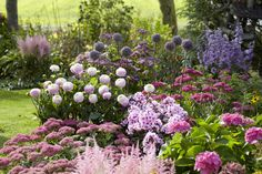 Creating garden borders isn't hard, but it's much easier if you put a little thought into it first. blumenbeet The Basics of Border Design Garden Care, Hydrangea Garden, Hydrangeas, Little Gardens, Astilbe, Garden Borders, Garden Cottage, Flower Beds, Dream Garden