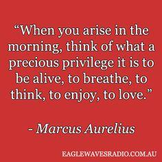 -  Marcus Aurelius
