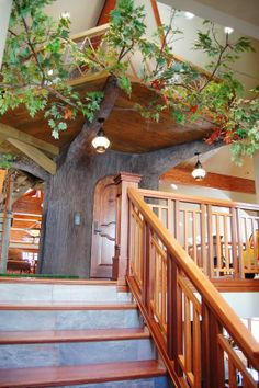5 Inspiring & Impressive Indoor Treehouses