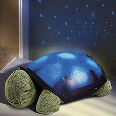 Constellation Nightlight...How neat!